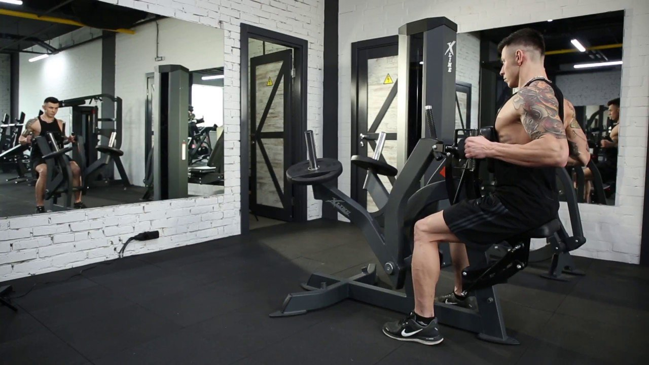 Seated ack Rows Exercise
